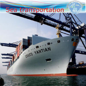 Sea Shipping, Warehouse Storage, Customs Declaration, Shipping Agent. pictures & photos