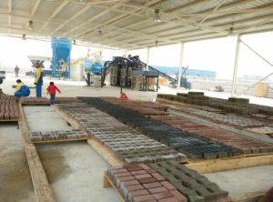 Interlock Paver Machine/Brick Making Machine pictures & photos