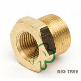Brass Reducer Bushing Fitting/Adapter pictures & photos