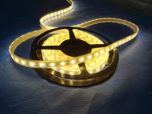 IP68 5730 60 LEDs Light LED Flexible Strip with Rubber Tube pictures & photos