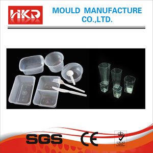 Thin Wall Injection Mould