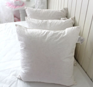 Feather and Down Filling Cushion