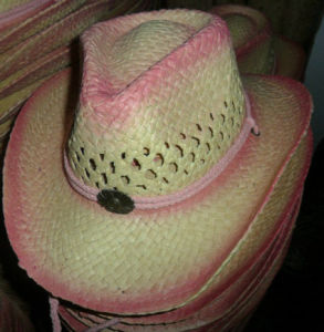 children cowgirl hat pictures & photos