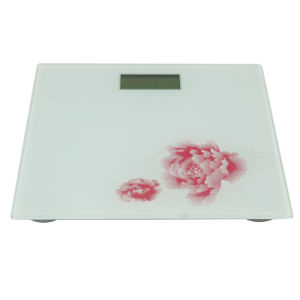 Healthy Scale Body Scale with LCD Display of 180kg (AV-901) pictures & photos