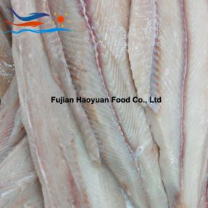 Frozen Blue Shark Fillet pictures & photos