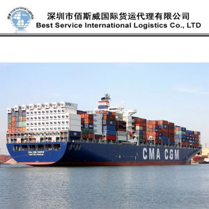 International Shipping, Ocean Transportation as Door to Door Service (20′′40′′) pictures & photos