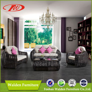 Good Quality Rattan Furniture (DH-N9007) pictures & photos