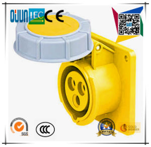 Industrial Socket of IP44 16A 2p+E Plastic PA Ppcee