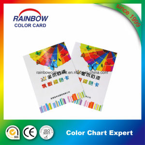 Promotional Customized Paint Coating Brochure for Advertisement pictures & photos