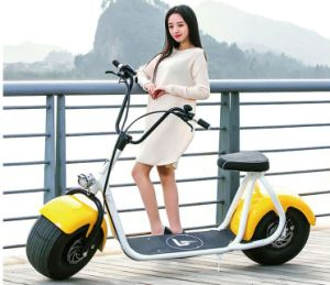 Disc Brake City Style 2 Wheels Mobility Scooter for Adults