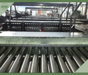 Hot Selling Walnut Selecting Conveyor System