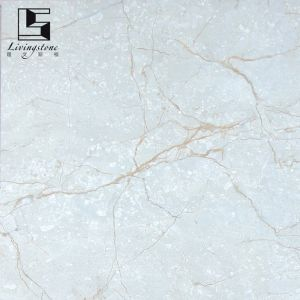 Italian Newest Full Glazed Porcelain Marble Tile pictures & photos
