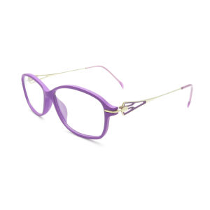 Manufacturers Ti3006 Robust and Durable Fashion Personality Tr90 Optical Frame