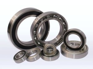 Chinese Suppliers Bearing Sizes Deep Groove Ball Bearing S6000z