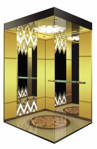 Professional Passenger Elevator/Lift pictures & photos