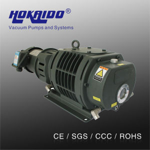 Roots Vacuum Pump for Leak Detective Equipment (RV0300)
