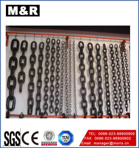 Galvanized Alloy/Stainless Steel Chains for Twist Link Chain pictures & photos