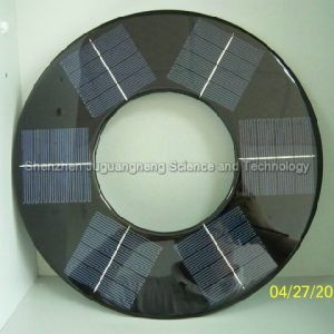 Annulus Small Solar Panel (J-D300) pictures & photos