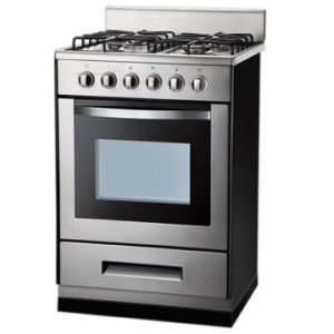 Free Standing Gas Cooker with Ovens (GS-FS01SS)