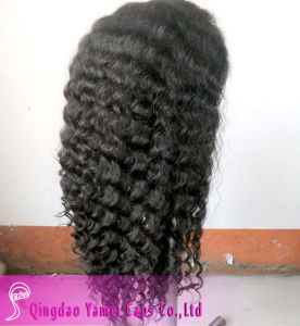 New Products on China Market 100% Unprocessed Malaysian Human Hair Full Lace Wigs (YM-W-069)