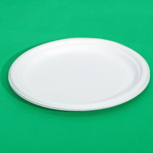 7 Inch Disposable Round Paper Plate