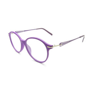 Cheap Price Ti3003 Fashion Personality Exquisite Comfort Eyewear Optical Frame in Stock