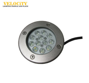 12W/24W High Brightness IP68 RGB LED Waterproof Swimming Pool Outdoor Fountain Light