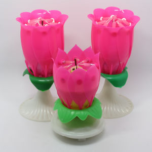 Creative Birthday Party Use Flower Candle pictures & photos