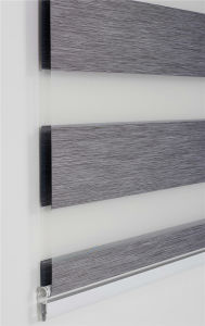 Blackout Zebra Blinds for Hotel Project Vison Blinds pictures & photos