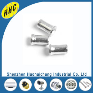 Customized High Quality Stainless Steel Blind Rivets for Transformer