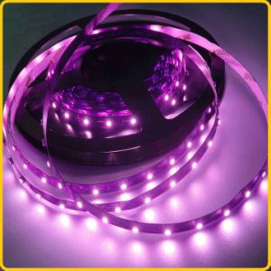 Pink Color Waterproof LED Tape Light