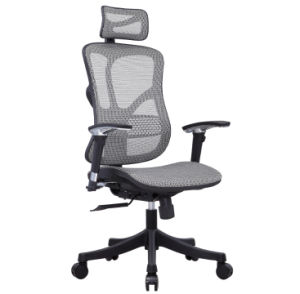 American Standard High Quality Mesh Office Chair