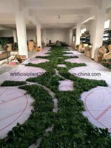 40*60 Indoor Plastic Grass pictures & photos