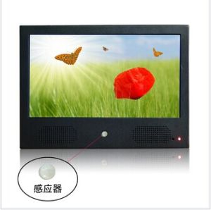 10inch Metal Case LCD Screen pictures & photos