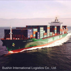 FCL/LCL Ocean Freight Shipping From China to San Francisco, Ca/Savannah, Ga/Seattle, Wa