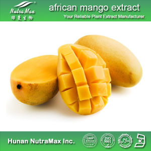 China High Quality African Mango Extract 4 1 10 1 Powder