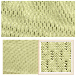 Warp Knitting Tricot 100% Polyester Mesh Fabric for Clothing pictures & photos