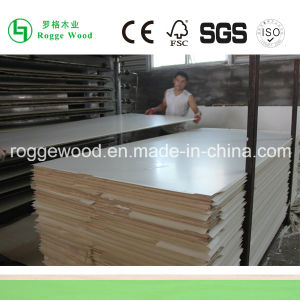 Melamine Laminated Plywood/ Melamine Paper Faced Plywood