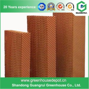 Greenhouse Evaporative Cooling Pad / Wet Pad / Water Curtain for Sale