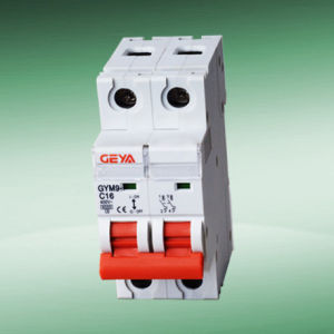 Gym9 Mini Circuit Breaker (C45 type 2P)