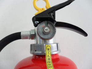 Powder Fire Extinguisher (11)