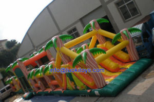 Big Size Inflatable Obstacle Course for Sale with Certificate (B024)