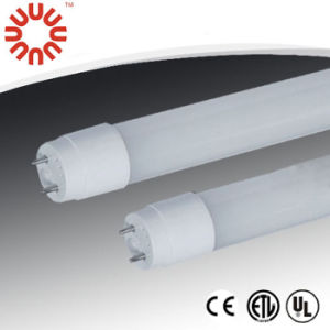 Fluorescent T8-600-10W LED Tube Lights with CE UL pictures & photos