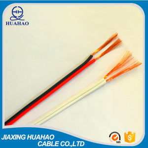High Quality 2X1.0mm2 Speaker Cable with IEC Standard pictures & photos