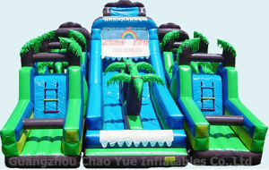 Commercial Outdoor Childrens Inflatable Slide for Amusement Park pictures & photos