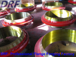 Oil Pipe Flange, Forging Flange, Stainless Steel, Alloy Steel