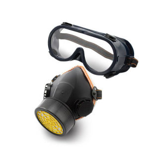 Reusable Double Cartridge Chemical Half Gas Mask Respirator pictures & photos