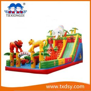 Funny Bouncy Castle, Amusement Equipment Inflatable Castle Txd16-212466 pictures & photos