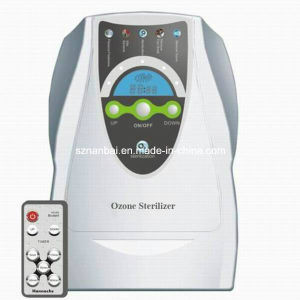 500mg/H Remote Control Ozone Generator for Air Water Treatment pictures & photos
