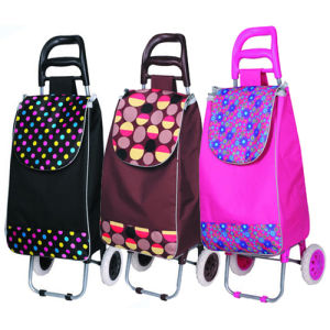 Portable Trolley Bag for Shopping and Travelling (SP-542) pictures & photos